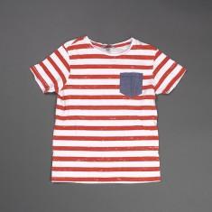 Majica št. 146